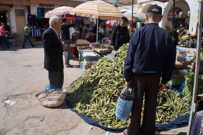 Впечатления от посещения Туниса (24 фото)