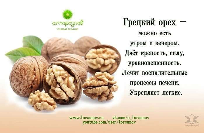О пользе и вреде орехов и прочего