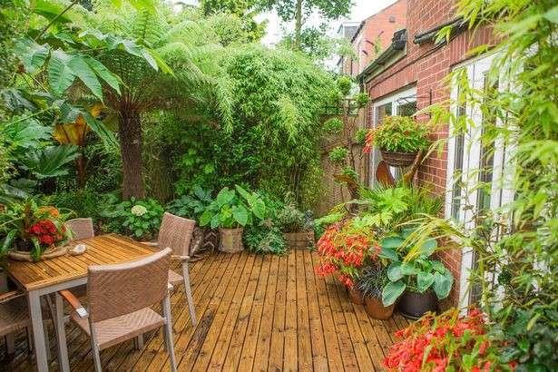 Англичанин превратил собственный сад в тропический лес (13 фото)