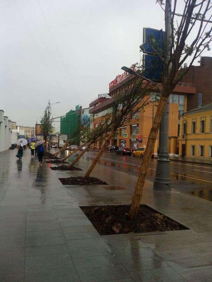 Вот почему -заМКАДье- так не любит Москву и москвичей (23 фото)