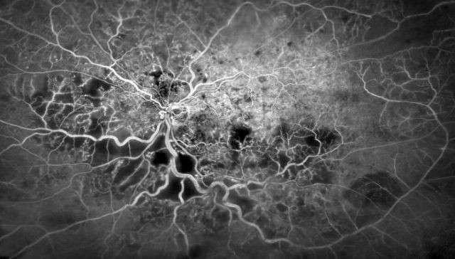 Удивительные фото из мира науки (19 фото)