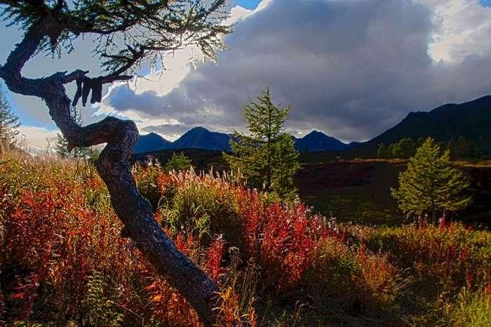 Камчатка - там, где далеко и красиво (15 фото)