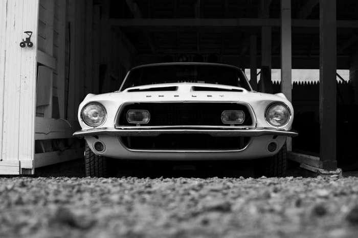 Shelby GT 500 найден спустя 40 лет после угона (17 фото)