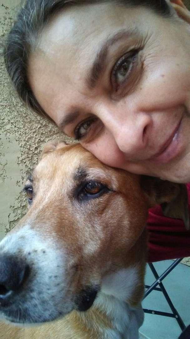 -Дайте мне самого несчастного и ненужного пса!-, — попросила девочка (7 фото)