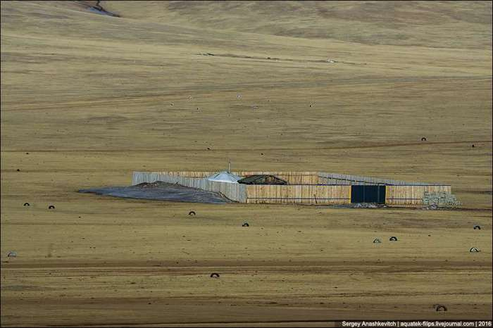 Зачем монголы ставят заборы посреди степей (6 фото)