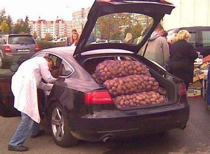 Когда у тебя хорошая тачка, но продолжаешь экономить даже на картошке (17 фото)