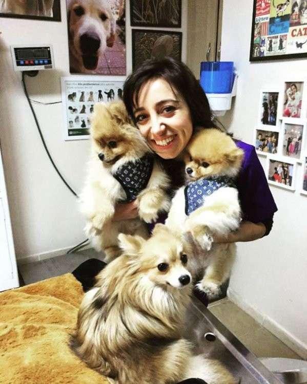20 фото-доказательств того, что ветеринар - замечательная профессия (21 фото)