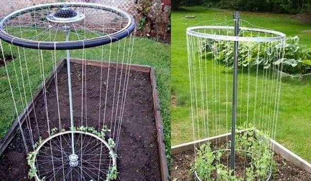 Прикольные идеи для дачи и сада (26 фото)