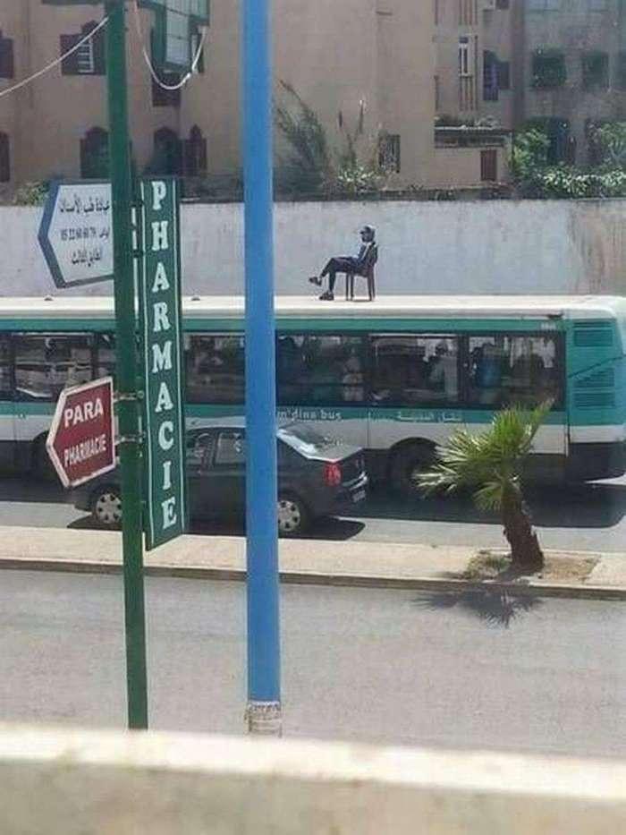 Очарование общественного транспорта (24 фото)