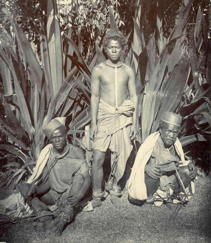 Неизвестная Африка. Фотографии 1870-1930 годов <br><br><b><b>Рабы на Мадагаскаре, 1900</b></b><br><img class=