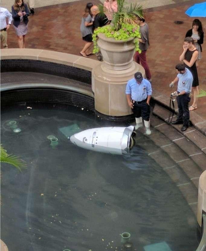В Вашингтоне робот-охранник -утопился- в фонтане <br><br><b>2. <b></b> </b><br><br>17 июля сотрудники торгового комплекса «Вашингтонская гавань» в Джорджтауне сообщили, что робот-охранник K-5, созданный стартапом Knightscope «для прогнозирования и предотвращения преступлений», был найден в фонтане неподалёку от здания.<br ><br><br ><br>Устройство приобрели «недавно» для патрулирования парковок торгового центра в Вашингтоне. По словам свидетелей, робот самостоятельно поехал в фонтан и «утопился», после чего перестал функционировать.<br /> <br><b>3. <b></b> </b><br><img class=