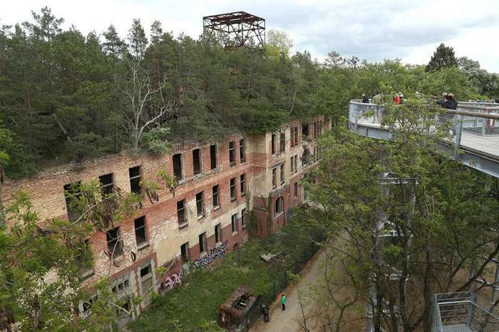Из жизни деревьев <br><br>Гуанси, Китай<br /> <img class=