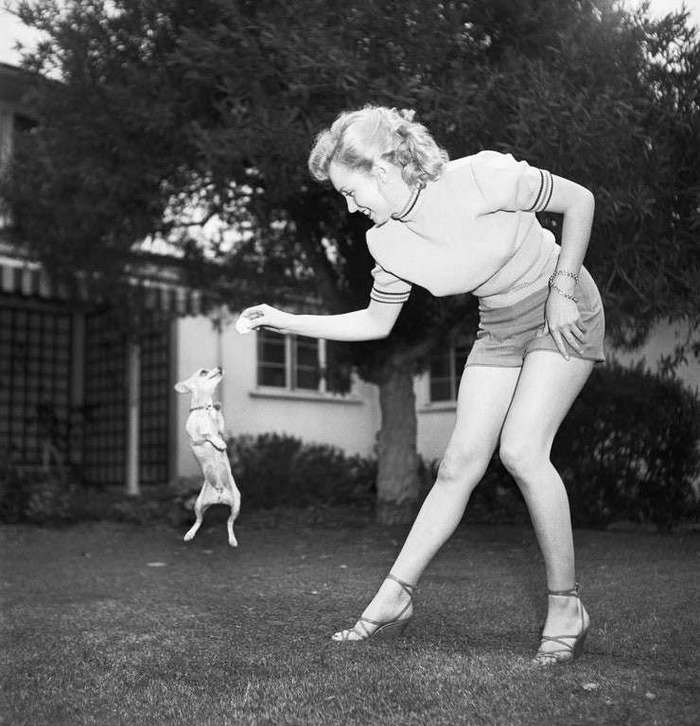 Интересные фотографии известных людей <br><br><b> <b>Мэрилин Монро с чихуахуа, 1950</b> </b><br><img class=