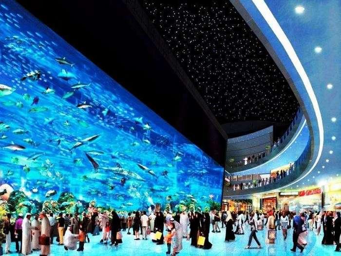 Самые известные океанариумы мира <br><br>Год появления: 2012.<br ><br><br ><br>Свой невероятный океанариум есть и в Сингапуре, общий объем воды его аквариумов составляет более 45 000 кубометров. В них обитает более 10 000 рыб и морских животных, которые относятся к 800 различным видам. Среди выдающихся особенностей океанариума стоит отметить его центральный аквариум, его обзорная панель является самой большой в мире. Ее ширина составляет 36 метров, а высота – 8,3 метра соответственно. На фоне этого огромного экрана люди выглядят совсем крохотными, он позволяет им наслаждаться эффектом присутствия и чувствовать себя частью огромного океана.<br ><br><br ><br>Славен океанариум Сингапура и редкими особями морских обитателей, в нем живет более 20 особей дельфинов-амалинов, а также бронзовая рыба-молот, увидеть которую можно далеко не в каждом крупном океанариуме планеты. Открытие океанариума состоялось в 2012 году, с момента открытия и по настоящее время он является самым крупным на планете.<br ><br><br ><br>Помимо непосредственно океанариума масштабный центр включает и парк развлечений, который тоже будет интересно посетить всей семьей. В красочном аквапарке для гостей подготовлено множество интересных аттракционов, а также традиционные водные горки, таинственные гроты и невероятно красивый подземный аквариум. Любителям необычных развлечений обязательно понравится подводный ресторан, из которого открывается вид на гигантский аквариум. На этом сюрпризы не заканчиваются, у всех посетителей есть возможность остановиться в отеле, который находится на территории океанариума, из его номеров тоже открывается роскошный вид на аквариумы.<br /> <br><b> <b>Океанариум Дубая, ОАЭ</b> </b><br><img class=