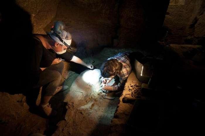 Египет. Калейдоскоп фотографий <br><br><b> <b>Работа с мумией в главной погребальной камере гробницы Персенеба. © Российская Археологическая Экспедиция в Гизе</b> </b><br><img class=