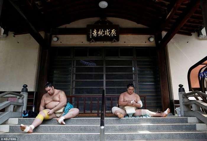 Секреты из закрытого мира бойцов сумо -15 фото-