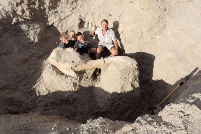 9-летний мальчик случайно нашел череп предка слона возрастом более 1 млн лет -4 фото-