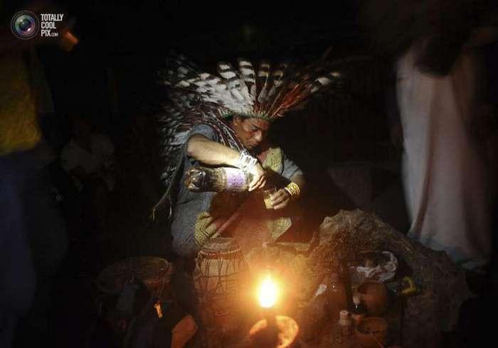 Выживание на Амазонке-21 фото-
