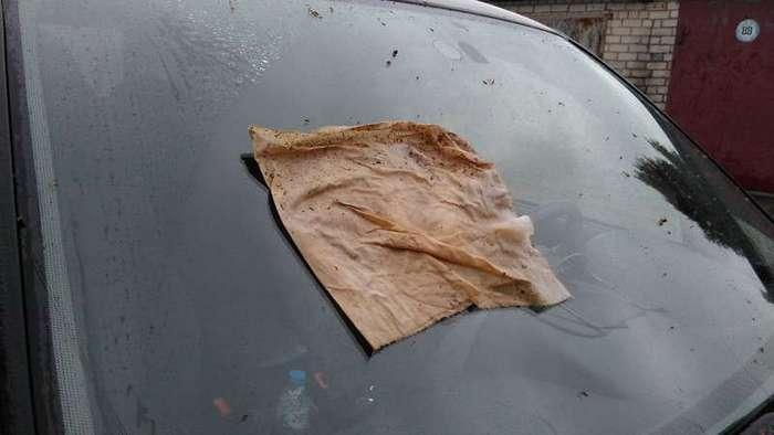 Дедовский способ очистки лобового стекла автомобиля-5 фото-