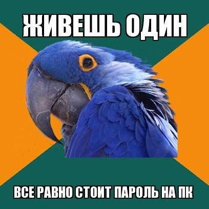 Лучше быть параноиком, чем с ножом в спине!-30 фото + 2 гиф-