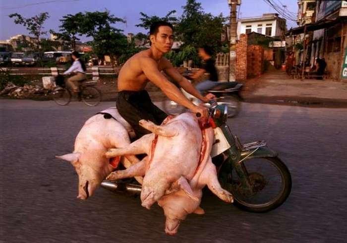 Вьетнам: нюансы правил дорожного движения-7 фото-