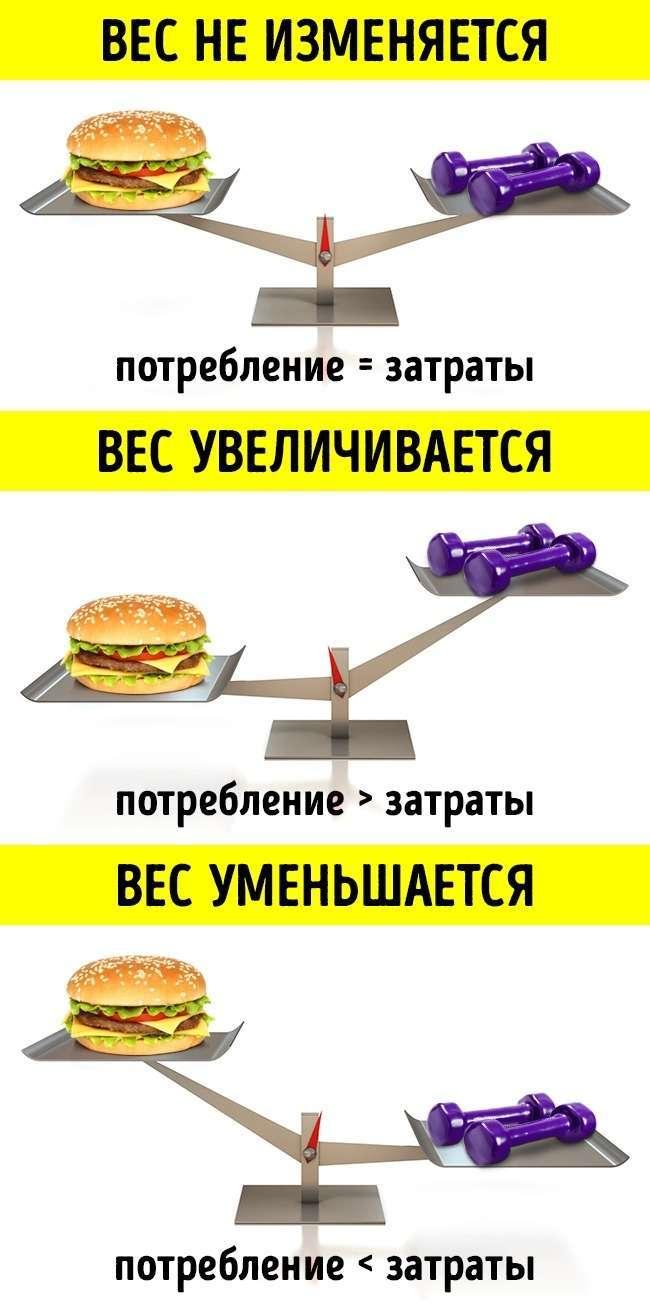 Всего одна вещь влияет наваш вес, ибольше ничего