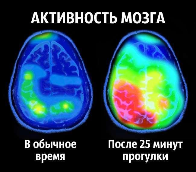 8советов нейробиолога отом, как стать счастливым раз инавсегда