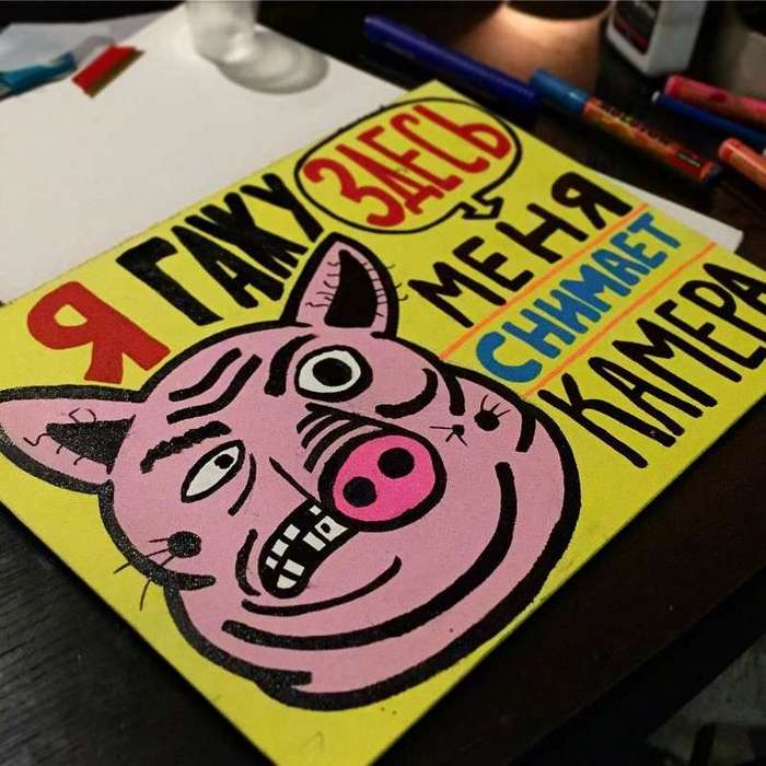 Берегитесь свиней, они могут заразить и вас своей болезнью!-24 фото-