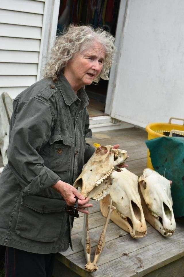 Она уже 40 лет живёт в одиночестве на удаленном острове, покрытом туманами 127 дней в году-7 фото-