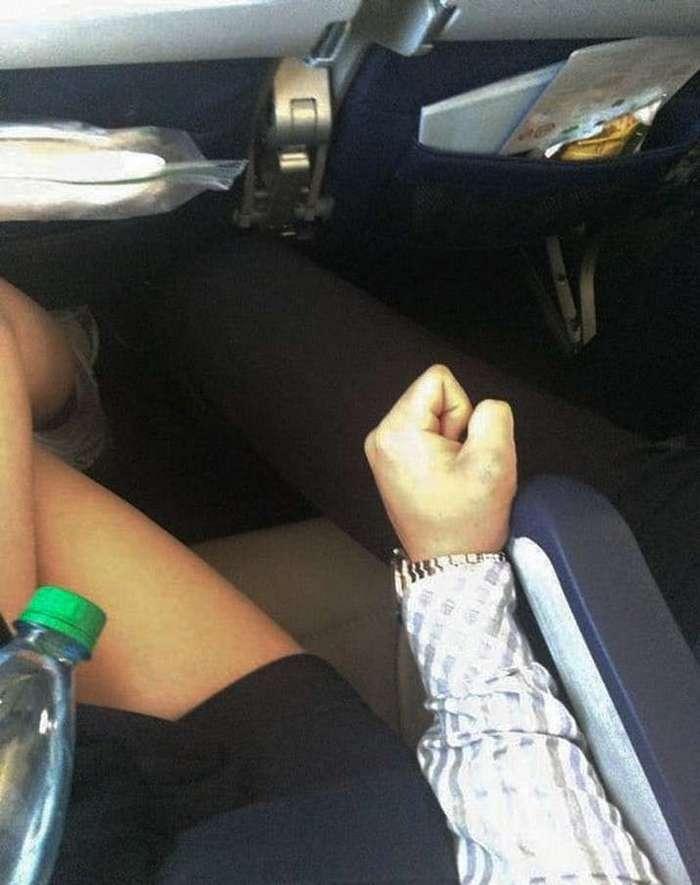 С — Свиньи. 14 пассажиров, которых стоило бы ссадить с самолета прямо в небе-15 фото-