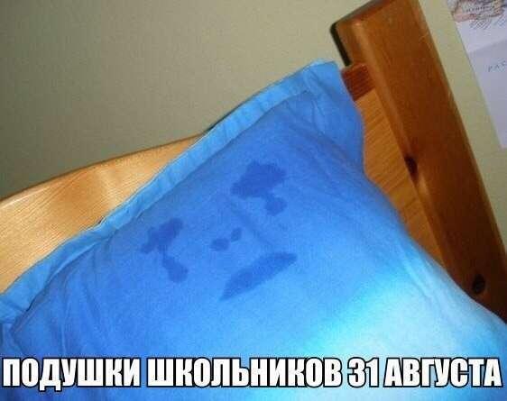 Смешные картинки с надписями-38 фото-