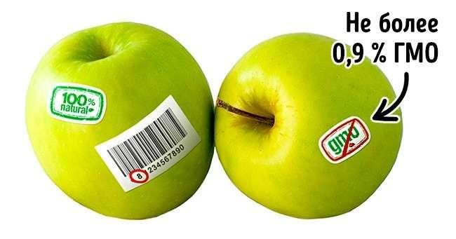 3простых способа отличить ГМО отобычных продуктов