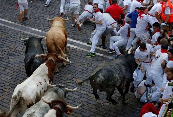 Как прошли ежегодные бега быков в испанской Памплоне