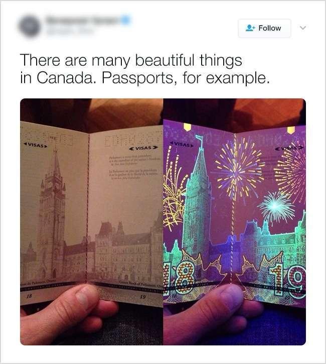 Вещи, которые можно встретить только в Канаде