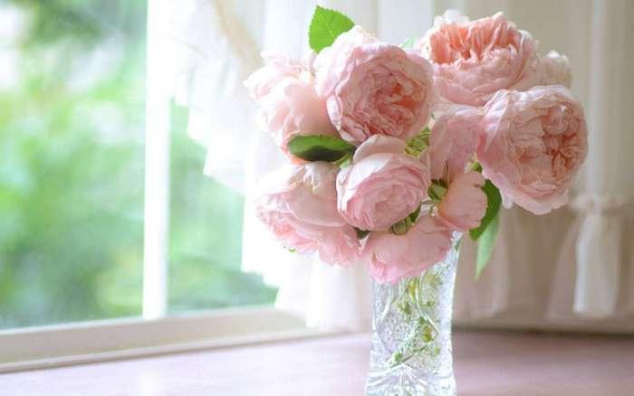 Продлеваем «жизнь» цветам в вазе?