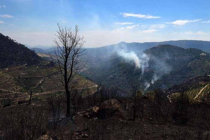 Европейские пожары лета 2017