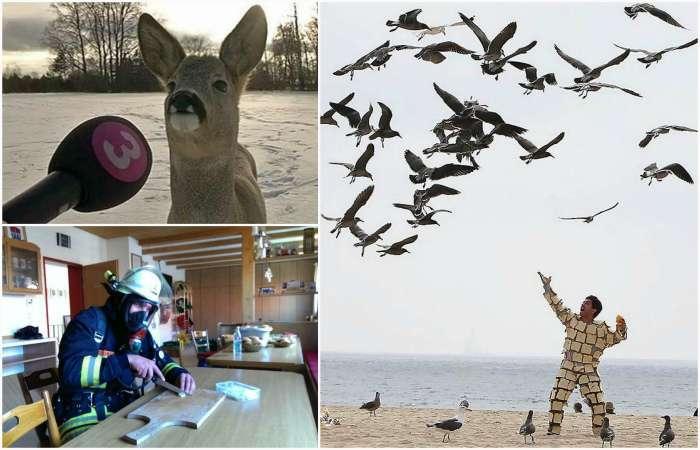 17 действительно странных фотографий, которые не поддаются никакому логическому объяснению