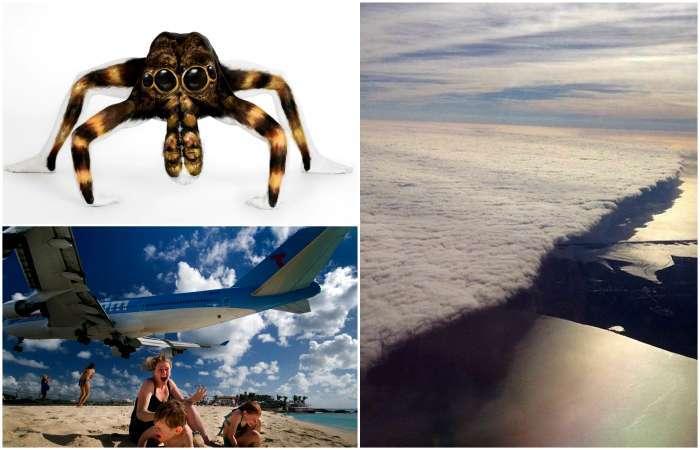 17 чарующих снимков без грамма фотошопа, которые заставят посмотреть на мир другими глазами