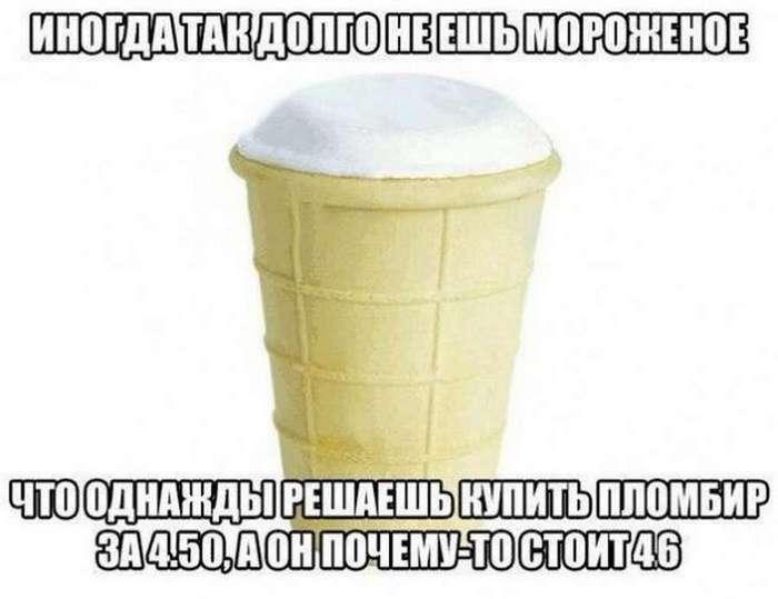 Легкий летний юмор (40 фото)