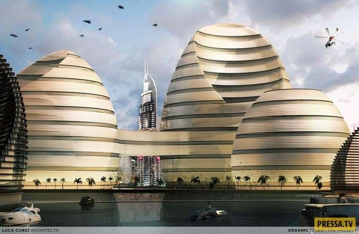 Органические города появятся в ближайшем будущем (18 фото)