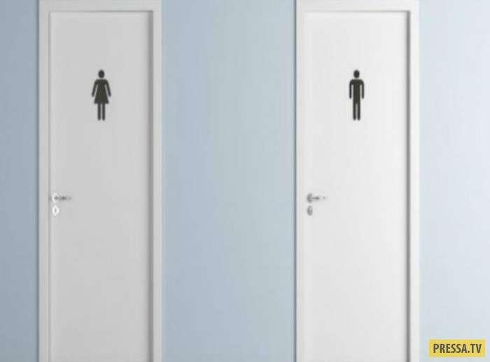 Причины по которым не надо брать телефон с собой в туалет (6 фото)