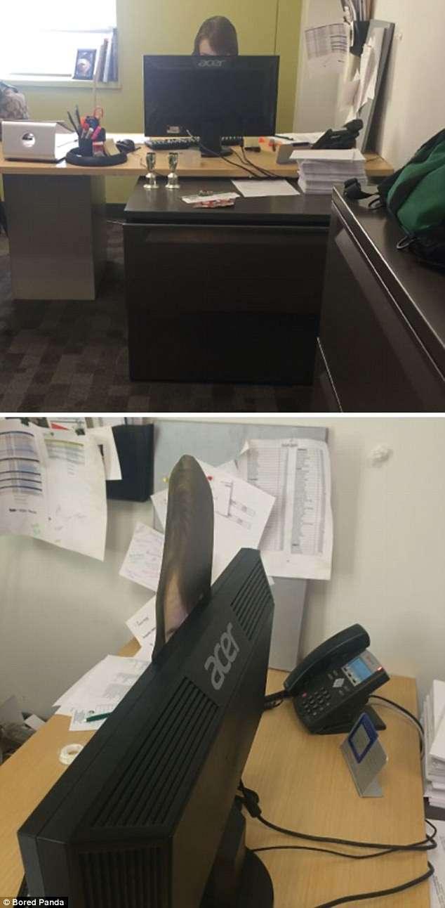 Лучшие офисные шутки: берем на вооружение!-18 фото-