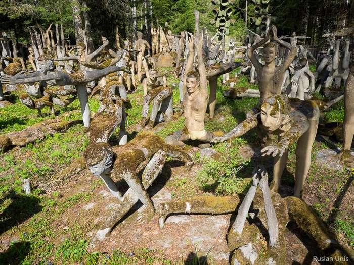 Сумасшедший лес в Финляндии-24 фото-