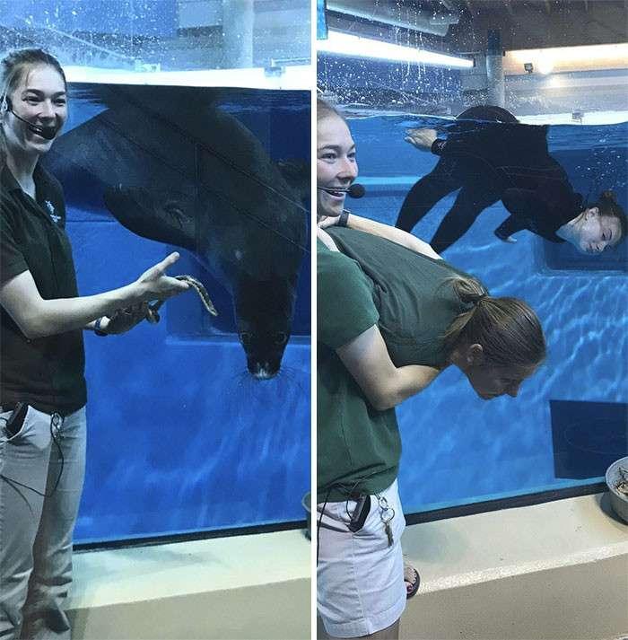 Как развлекаются смотрители зоопарка в свободное время?-17 фото-