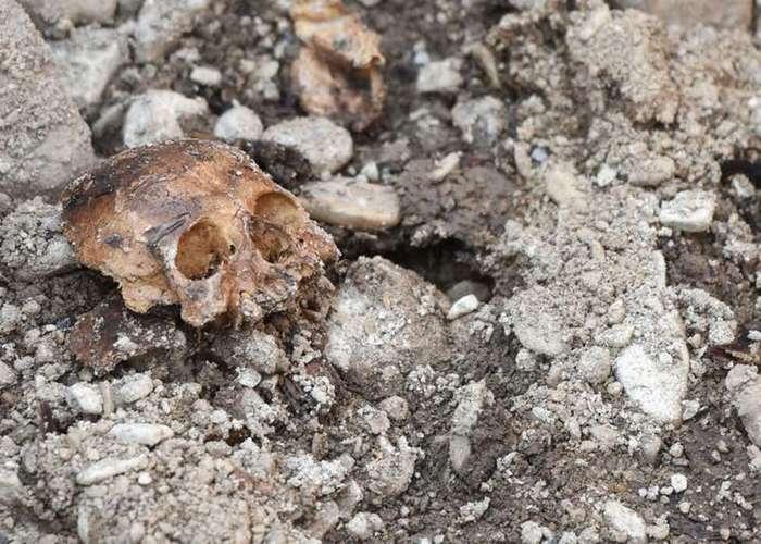 15 жутковатых находок, сделанных в заброшенных местах-16 фото-