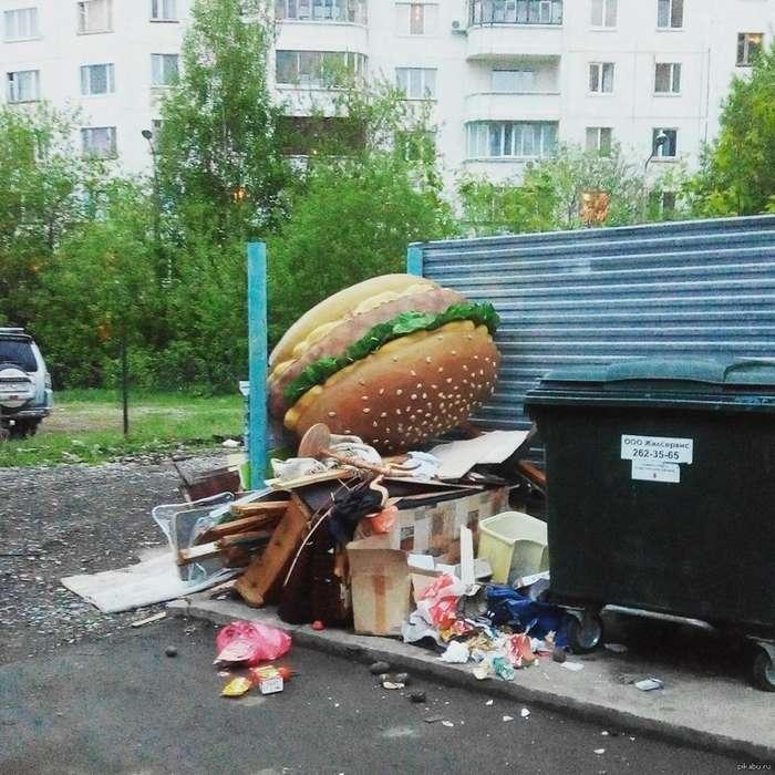 Чего только не увидишь на русских помойках!-25 фото-