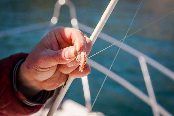 Настоящая камчатская рыбалка-34 фото-