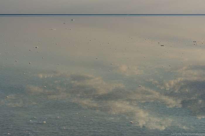 Август в России. Озеро Эльтон-39 фото-