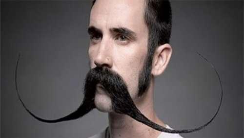 Смешные и причудливые бороды, которые вы ещё не видели (24 фото)