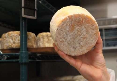 Топ-10: самые необычные ингредиенты в мире